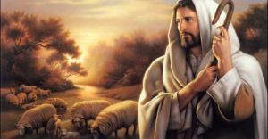 Pastorul meu